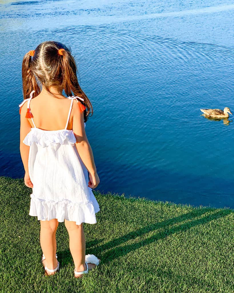 Young girl beside duck in lake