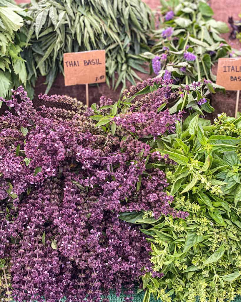 3 Days In Los Angeles itinerary - herbs at 3rd Street Farmers Market