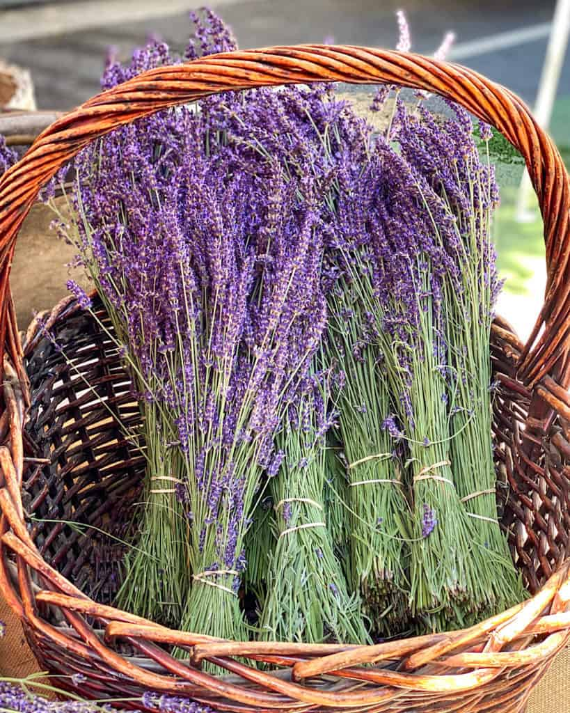 3 Days In Los Angeles itinerary - lavender at 3rd Street Farmers Market