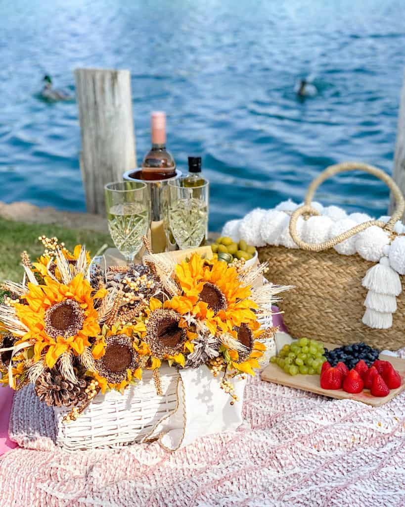 Perfect picnic with wine and snacks by the water