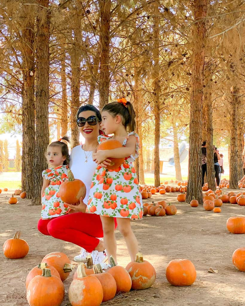 10 Tips for Taking Your Toddler to the Pumpkin Patch