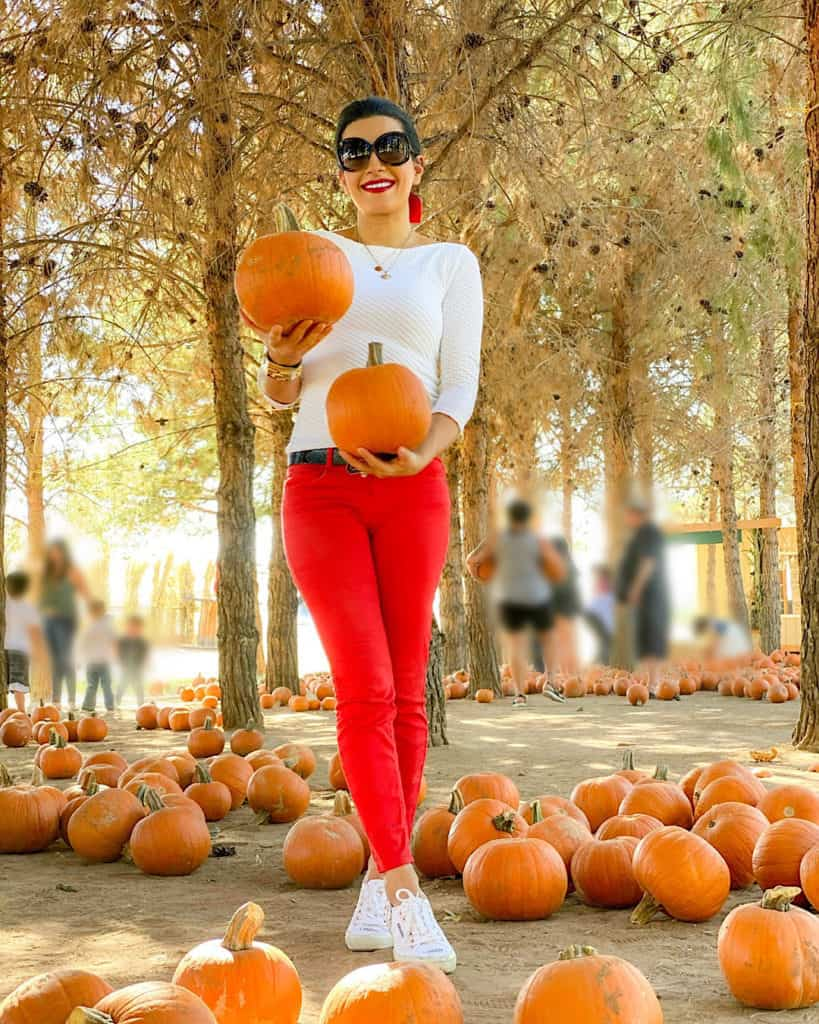 Lady in red jeans and white sweater holding pumpkins at the pumpkin patch