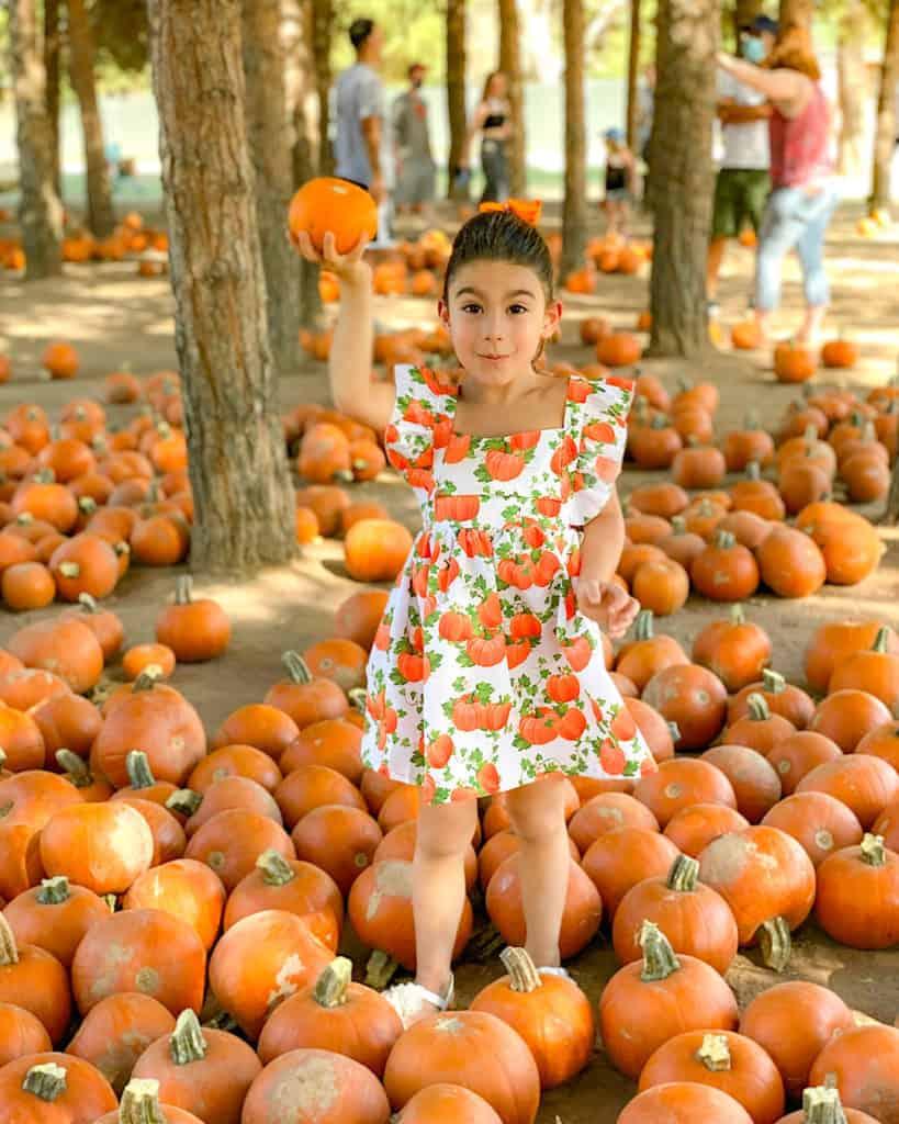 My daughter in a cute Pumpkin dress at the pumpkin patch, holding up a pumpkin