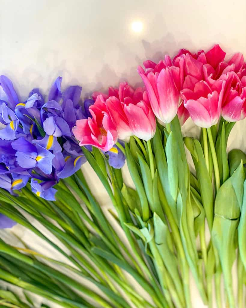 Tulips and irises: how to make a spring floral arrangement