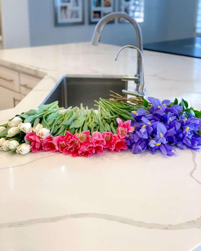 Fresh flowers: Irises and tulips on kitchen counter