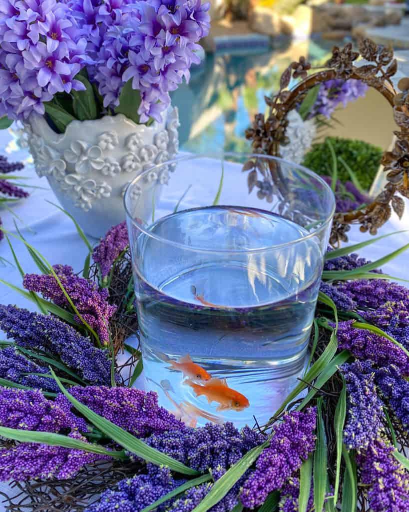 Bowl of Goldfish: Nowruz table decorations