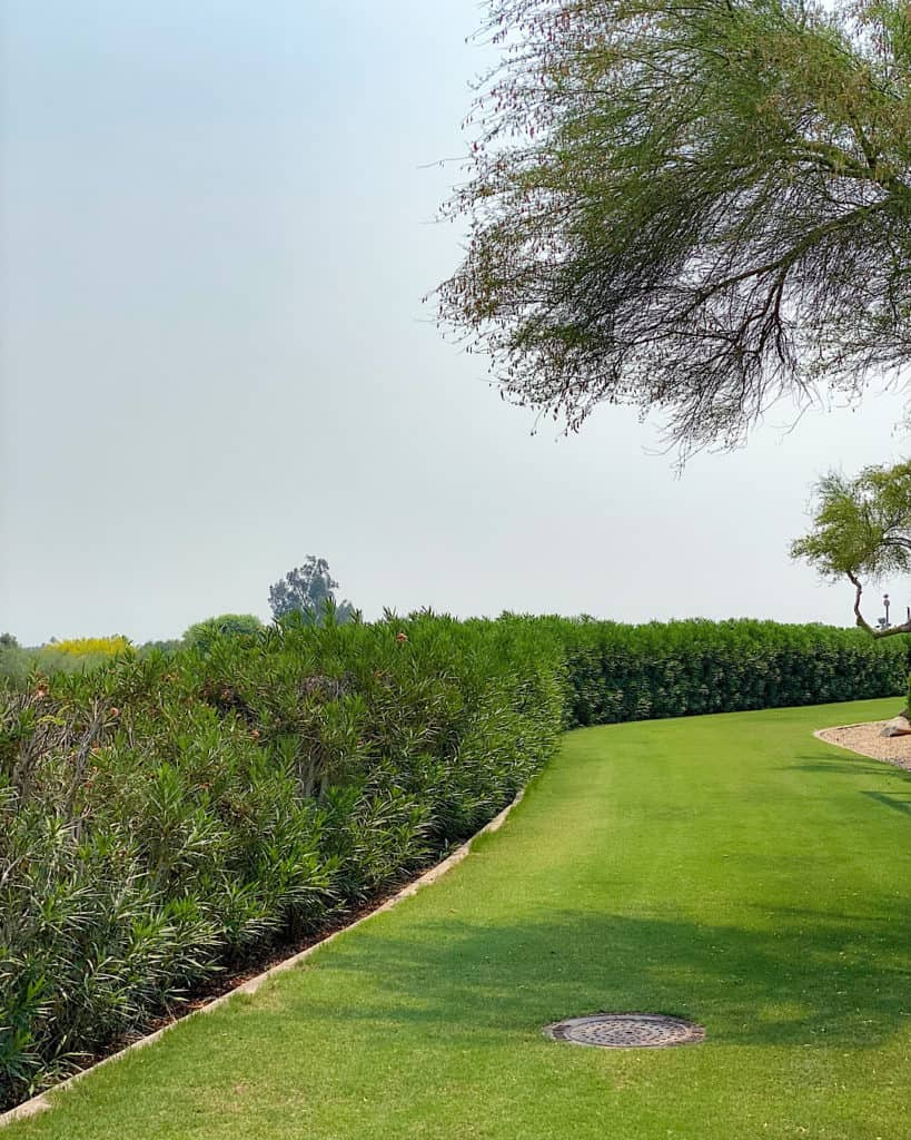 The Phoenician Golf Club - travel guide