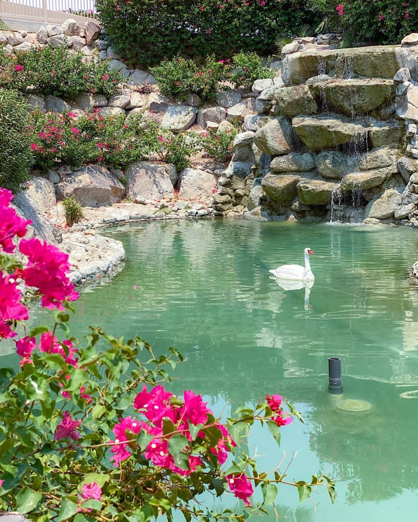 Travel Guide: The Phoenician - the beautiful landscaping